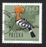 Sellos de Europa - Polonia -  Pajaros del Bosque