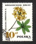Stamps Poland -  Plantas Medicinales