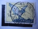 Stamps : Africa : Angola :  Shikra Meridional(Accipiter badius) - Astur Polyzonoides