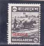 Stamps : Asia : Bangladesh :  bueyes arando la tierra-SERVICE