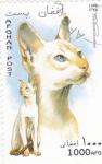 Stamps Afghanistan -  gatos de raza