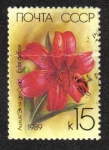 Stamps Russia -  Lirios