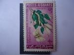 Sellos del Mundo : Asia : Afganistán :  Día de la Agricultura -Gusano de Seda (Bombyx Mori) Morera-Mariposa (Morus Sp)