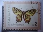 Sellos de Europa - Bulgaria -  Ihais Cerisyi