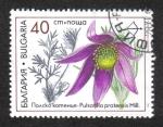 Sellos de Europa - Bulgaria -  Flora