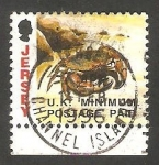 Stamps Jersey -  601 - Araña de mar