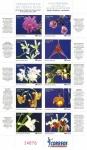 Sellos del Mundo : America : Costa_Rica : Orquídeas de Costa Rica