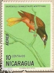 Sellos de America - Nicaragua -  Nicaraguan Birds - Oropéndola