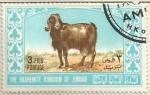 Sellos del Mundo : Asia : Jordania : Cabra de Angora (689)