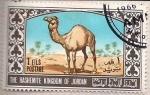 Sellos de Asia - Jordania -  Dromedario (687)