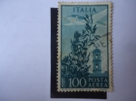 Stamps Italy -  Aviones-Torres- Serie:Aircraf Over Rome. Posta Aerea.