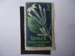 Sellos de Europa - España -  Beneficencia huérfanos de Telégrafo -Tánger-Marruecos - Fauna
