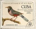 Sellos de America - Cuba -  Zorzal de patas coloradas (1743)
