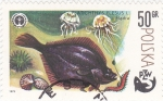 Stamps Poland -  pesca PZW