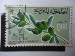 Stamps : Africa : Morocco :  Royaume Du Maroc.