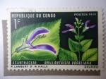 Sellos de Africa - Rep�blica del Congo -  Acanthaceae - Brillantaisia vogeliana.