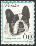 Sellos del Mundo : Europa : Polonia : Bulldog francés (1365)