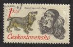Sellos de Europa - Checoslovaquia -  Perros de caza