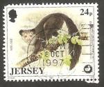 Sellos del Mundo : Europa : Isla_de_Jersey :  788 - Protección a la vida salvaje, daubentonia madagascariensis