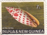 Stamps Oceania - Papua New Guinea -  caracola