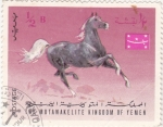 Stamps Yemen -  caballo de raza