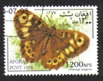 Stamps : Asia : Afghanistan :  Mariposas