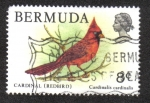 Sellos de America - Bermudas -  Cardinal