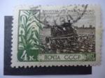 Sellos de Europa - Rusia -  CCCP