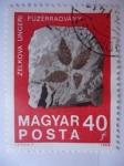 Sellos de Europa - Hungría -  Hojas petrificadas en Roca Sólida - Piedra evolutiva.