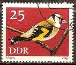 Sellos de Europa - Alemania -  Conservación,pájaros cantores,Jilguero,(DDR).