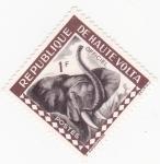 Sellos de Africa - Burkina Faso -  elefante