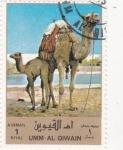 Sellos de Asia - Emiratos Árabes Unidos -  dromedarios