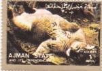 Sellos de Asia - Emiratos Árabes Unidos -  felino