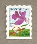 Stamps America - Honduras -  Flor Sobralia macrantha