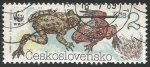 Sellos de Europa - Checoslovaquia -  Bombina bombina (3004)