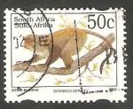 Sellos de Africa - Sudáfrica -  814 A - Cercopithecus mitis