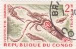 Stamps Republic of the Congo -  calamar