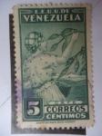Sellos de America - Venezuela -  E.E.U.U. de Venezuela - Recolectora de Café (Caponera)