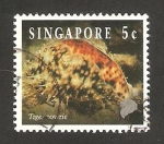 Sellos de Asia - Singapur -  688 - fauna marina, cyprae tigris