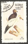 Stamps Oman -  Aves