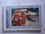 Sellos de Europa - Hungría -  Magyar Posta - Fauna