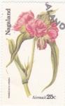 Sellos de Asia - Nagaland -  flores