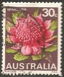 Sellos del Mundo : Oceania : Australia : Flor del Estado de Waratah