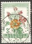 Sellos de Europa - Bélgica -  FLORALIES GANTOISES