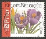 Stamps Belgium -  Azafranes