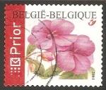 Stamps : Europe : Belgium :  Clavel rojo