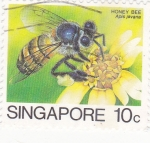 Stamps Singapore -  abeja