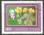 Stamps : Europe : Hungary :   fresa estéril de flor geum-como