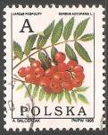 Stamps Poland -  azarollo