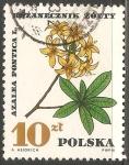 Sellos de Europa - Polonia -  Azalea pontica